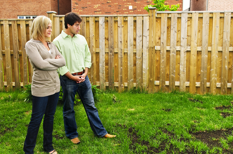 The Big Questions: Should You Astro Turf Your Lawn?