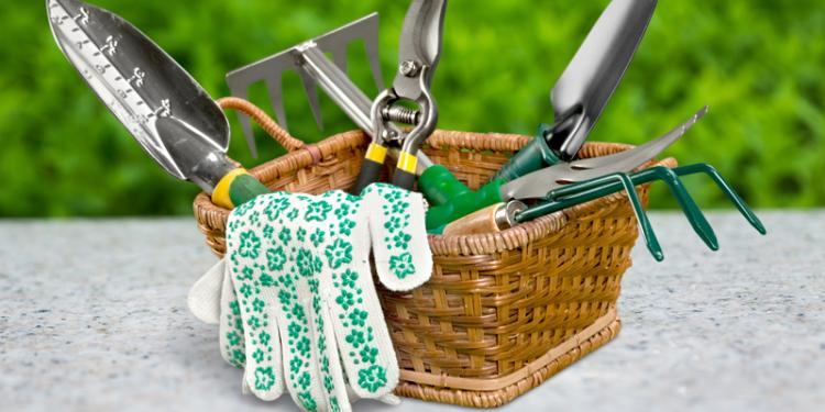 Pros and Cons of the Claw Garden Tool