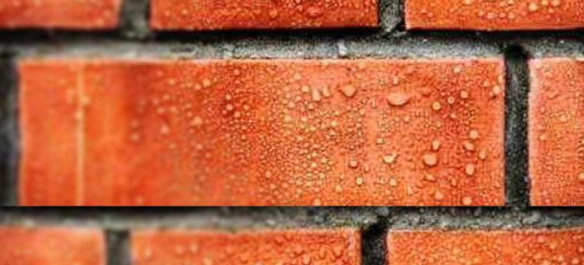 clear wall coating