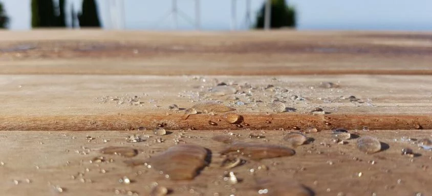 wood impregnator