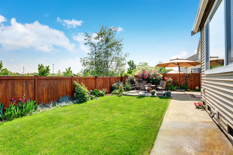 transform my back garden on a budget