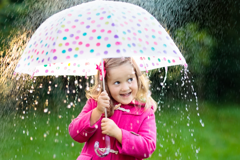 Wet Weather Gardening Activities To Make A Difference