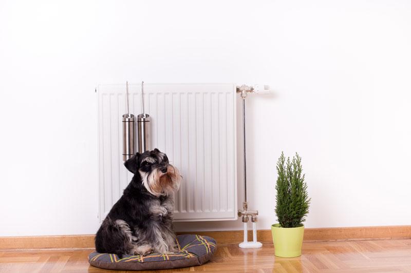 conservatory heating regulations
