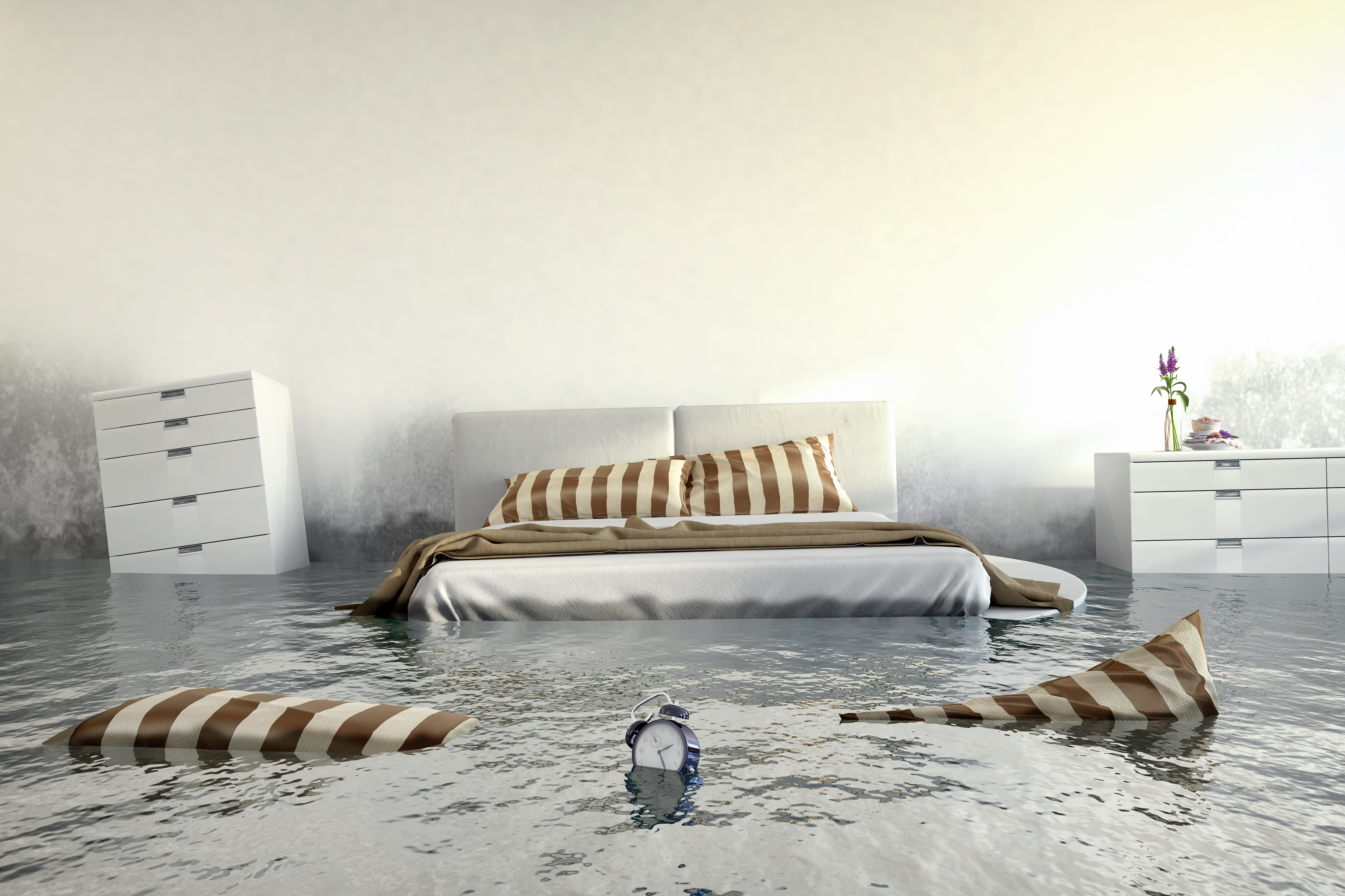 How To Get Rid Of Mould On Walls In Bedroom Home Logic