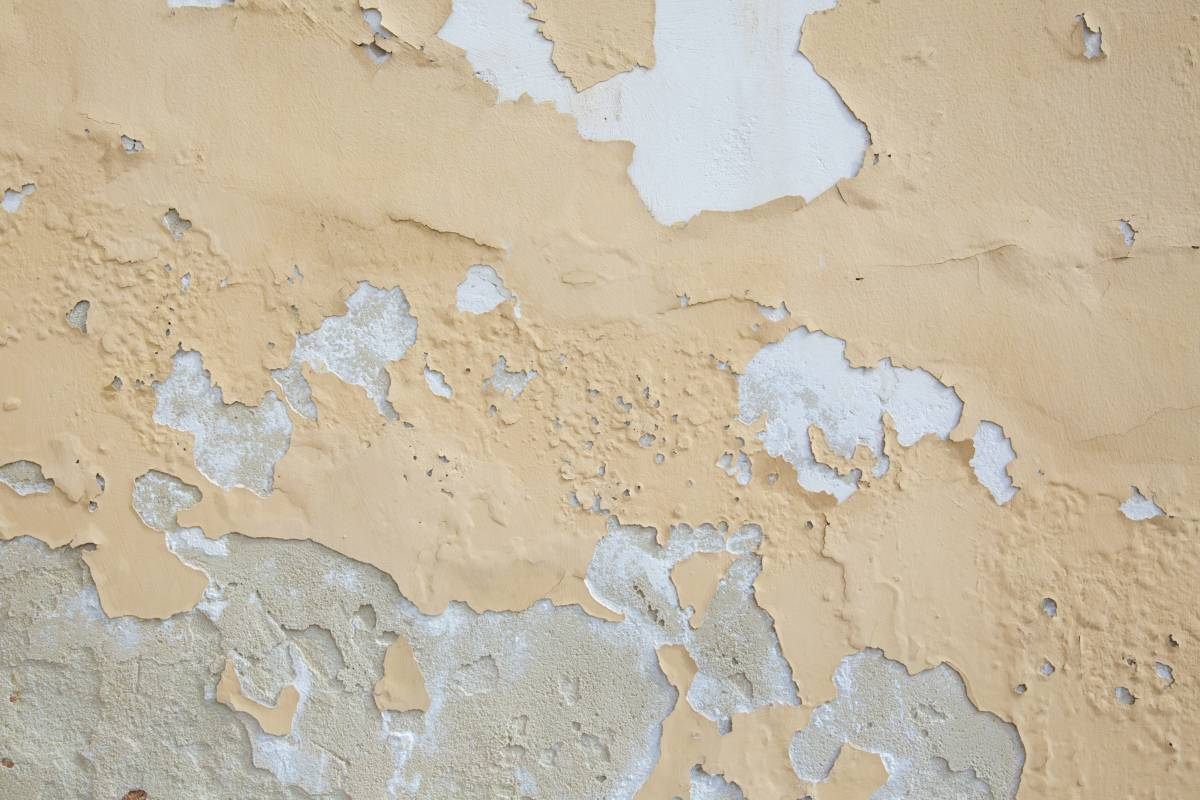 paint defects and solutions