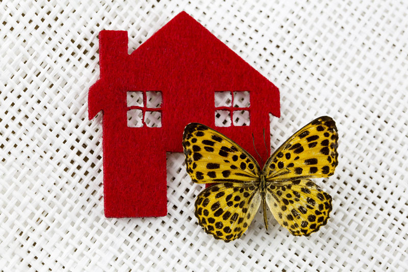butterfly-roof-pros-and-cons