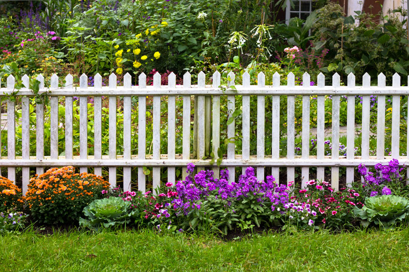 Cheap Boundary Fence Ideas: What Are My Options? | Home Logic