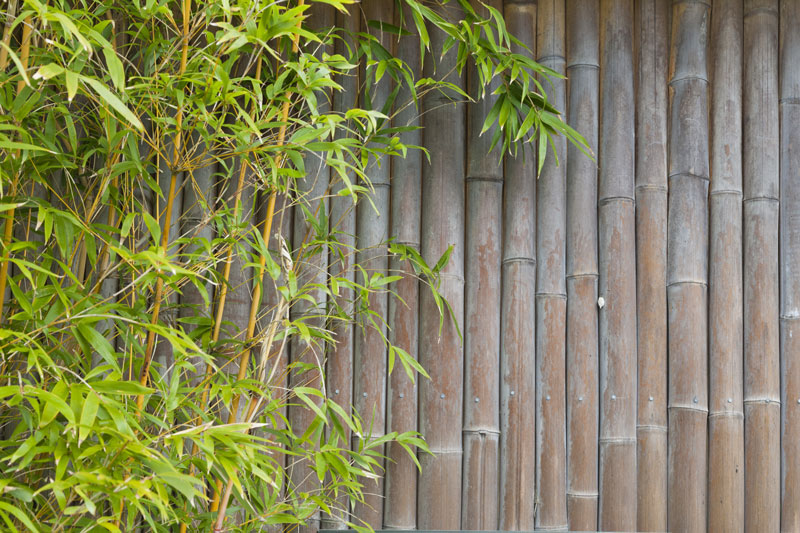 How to create an outdoor bamboo privacy screen home logic Bamboo screens for outdoors