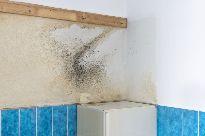 Removing Moisture From Bathroom
