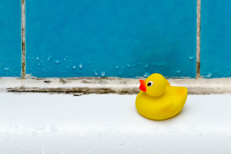 removing moisture from bathroom top tips and tricks