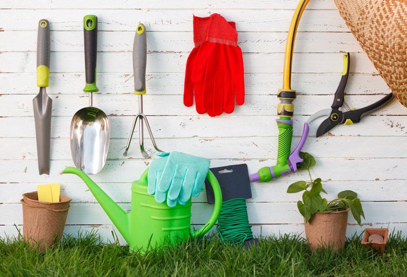 spray-foam-for-garden-sheds