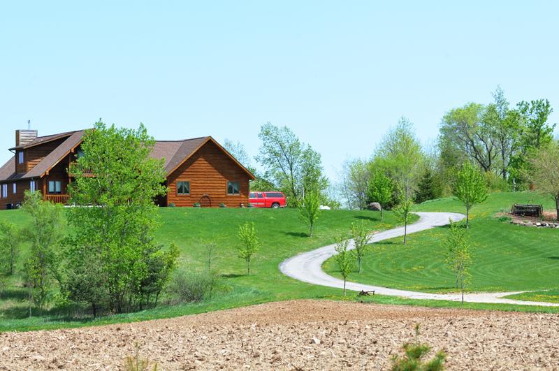 are-resin-driveways-wildlife-friendly